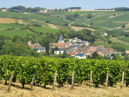 Loire-vallei